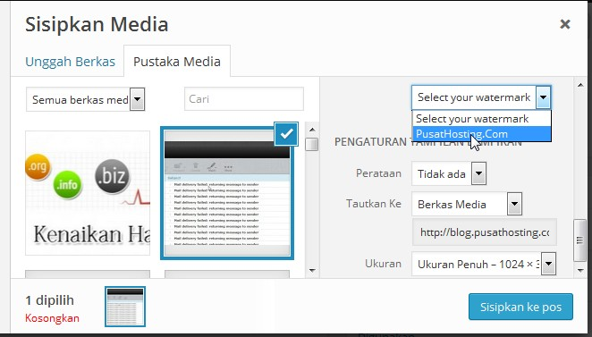alemha watermark media options pusathosting
