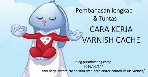 cara-kerja-varnish
